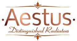 Aestus logo